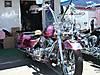 CIMG0951.JPG