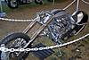 Easyrider_Daytona_Beach_Bike_Show_22.jpg