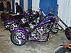 Black_Label_-_3_bikes.JPG