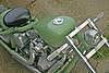 green_6.JPG
