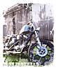 trishs_bike.jpg